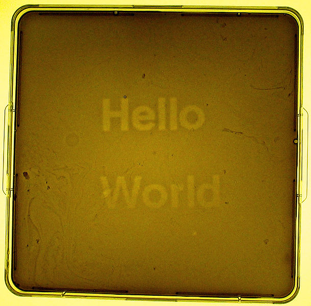 "A light programmable biofilm displaying ""Hello World"""